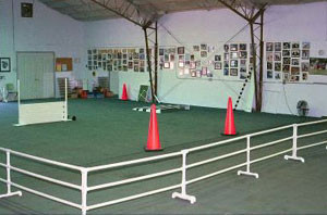 obedience_ring