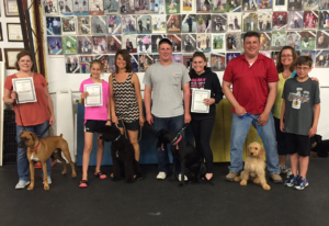 May Advanced Puppy Class