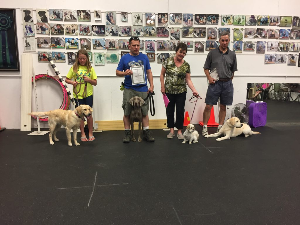 June 21 Advanced Puppy Graduating Class