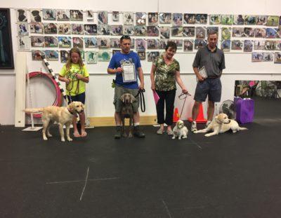 Congratulations – Advanced Puppy Grads!