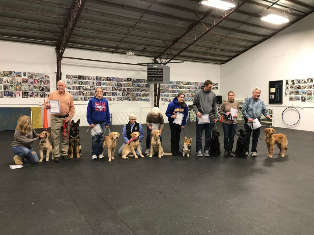 Advanced Puppy Grads (December 2017)