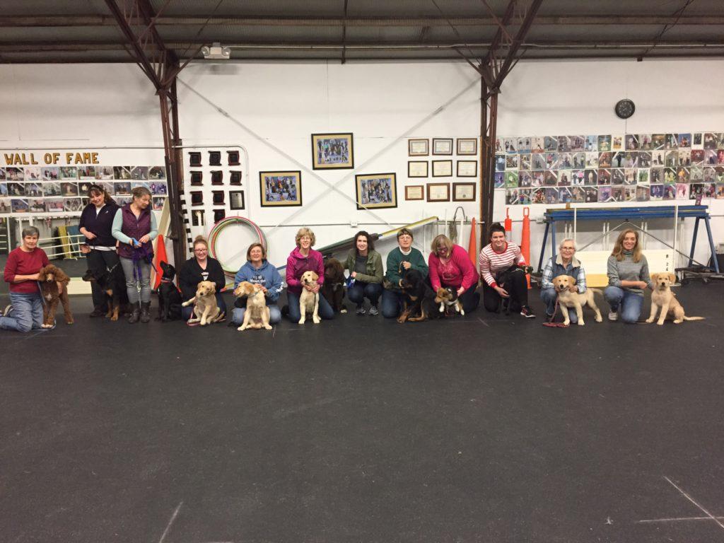 7pm Puppy Class (December 2017)