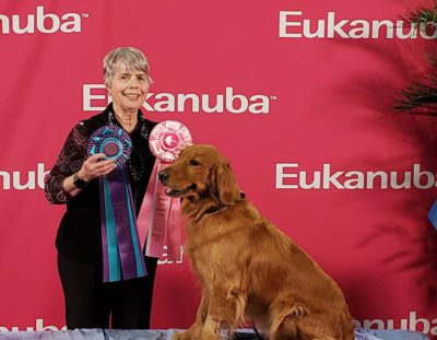 Results from AKC National Championship in Florida: Click here for photos