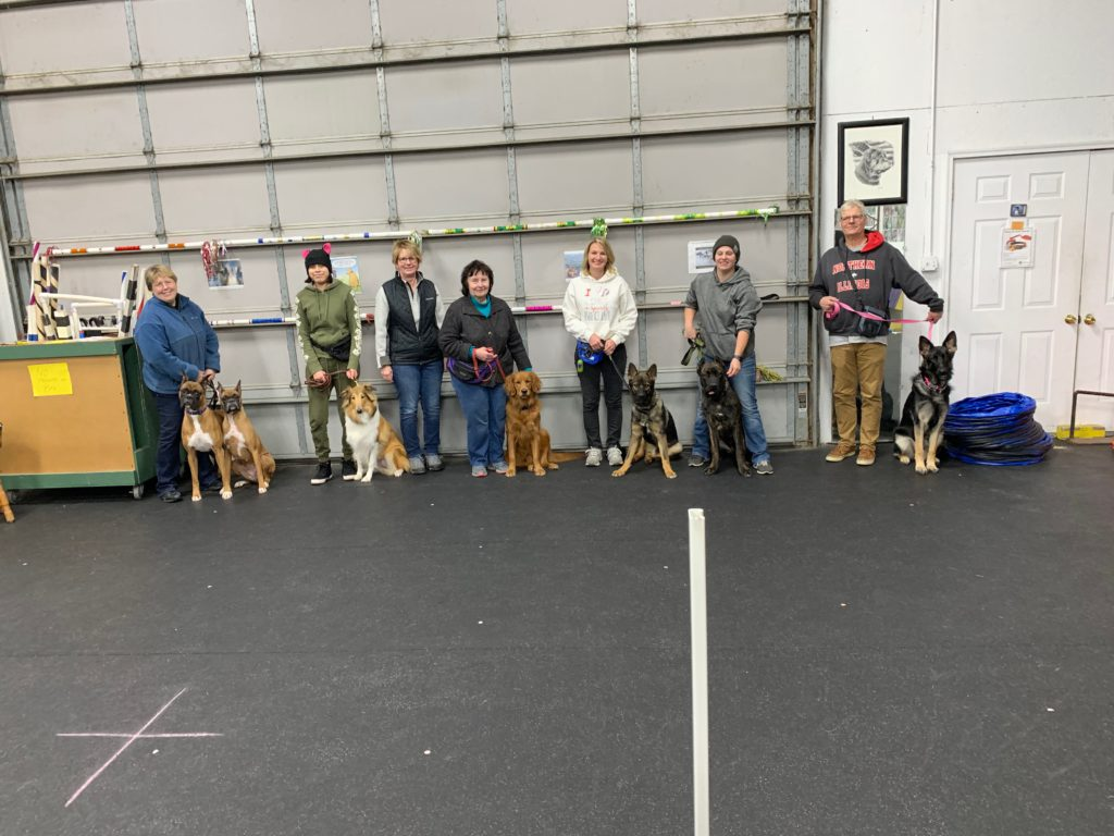 Advanced Puppy Class and new Novice Trick Dog 11/13/2019