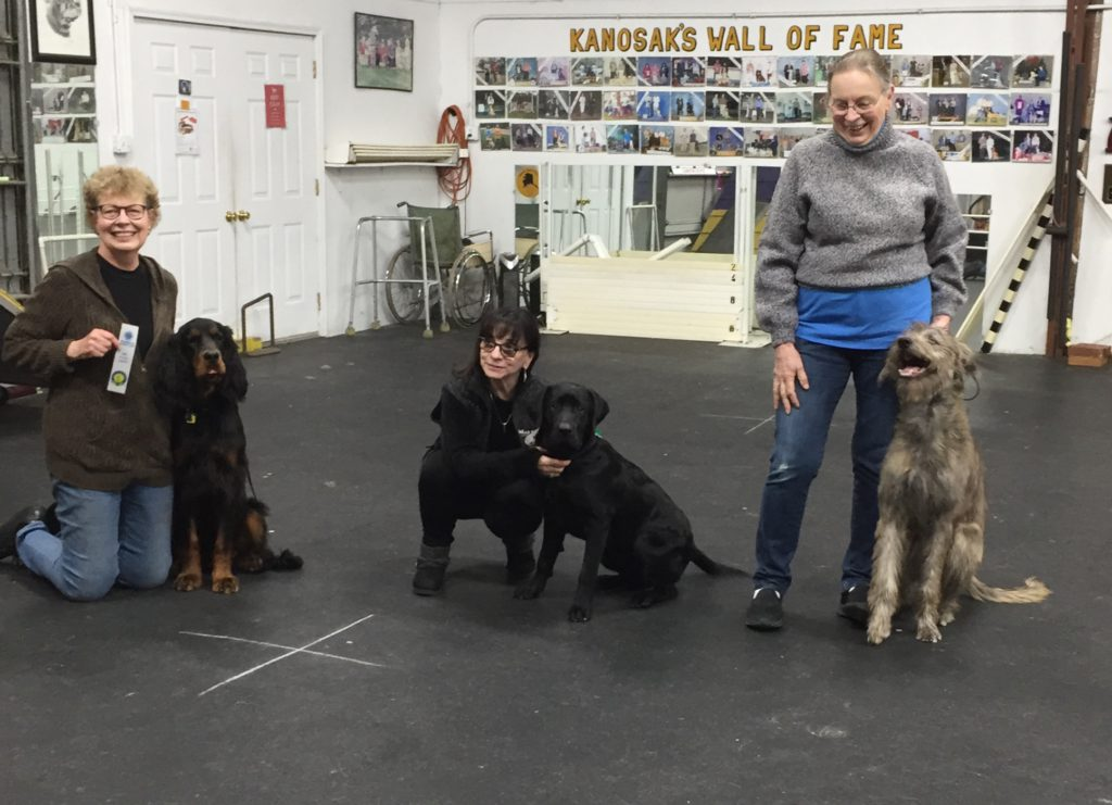 AKC Star Puppy Certification at Kanosak 3/12/2020