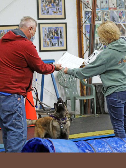 Advanced Puppy Graduation - October, 2020