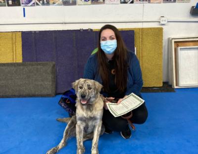 Puppy Class Graduates!